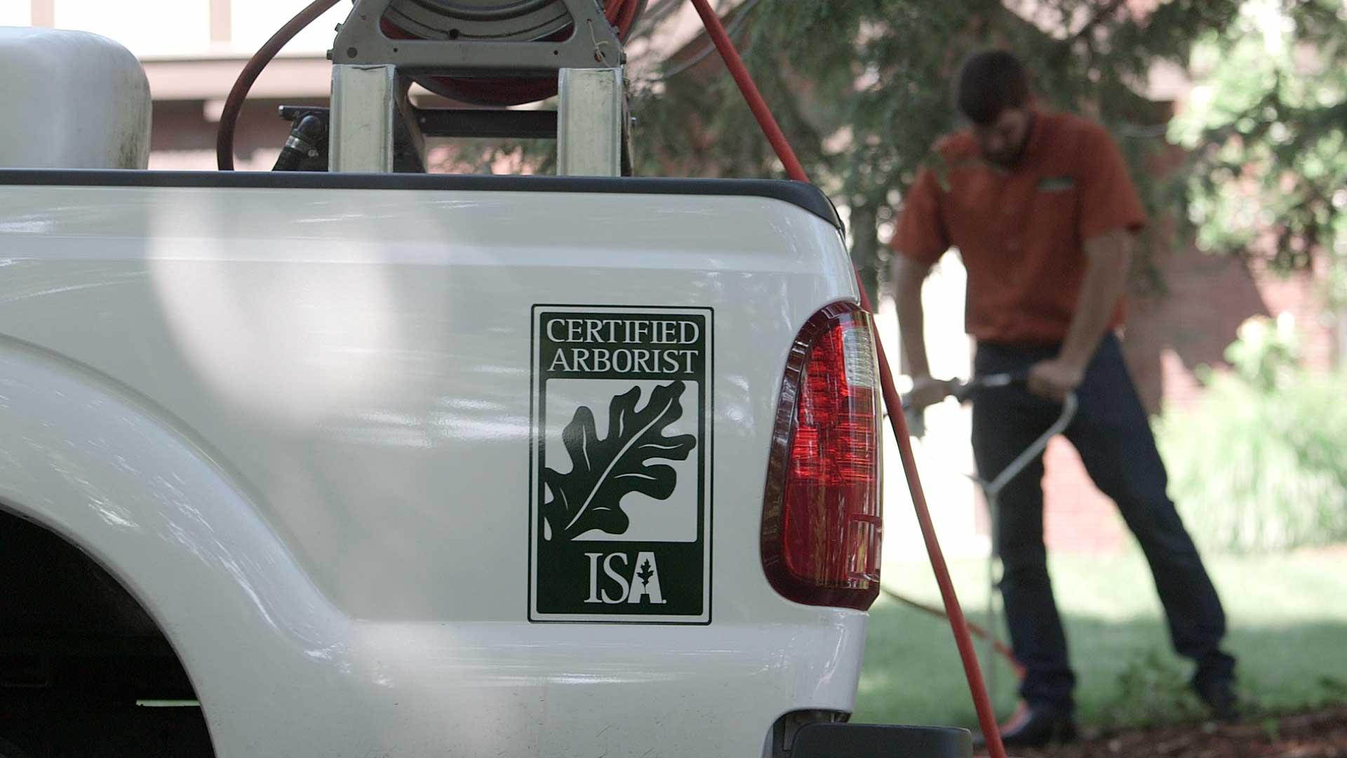 Tree service working in biltmore nc